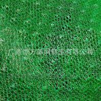 土网护坡盖土网绿化土工格网边坡植草网